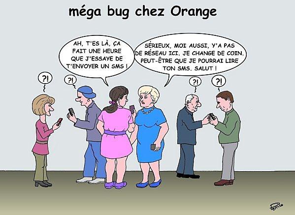 bug-orange